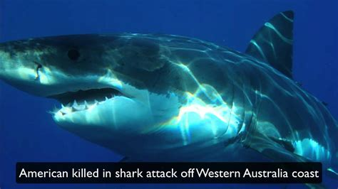 American killed in shark attack off Western Australia