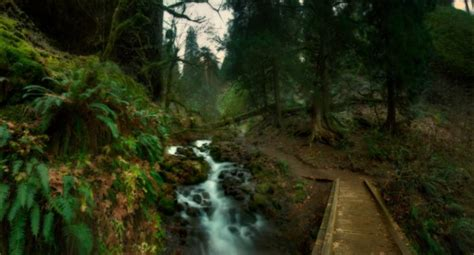 The Multnomah-Wahkeena Loop Just Might Be The Most